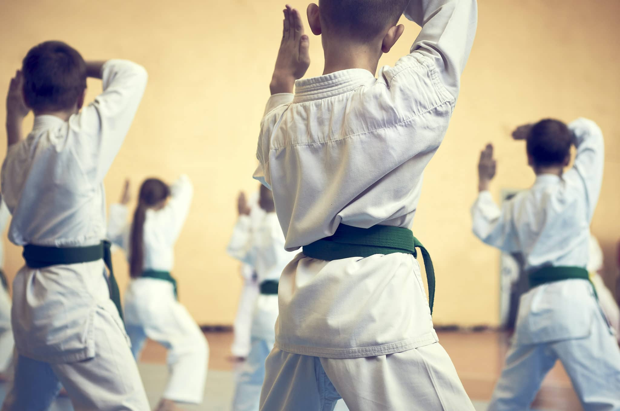 Palmetto Martial Arts Special Offers image
