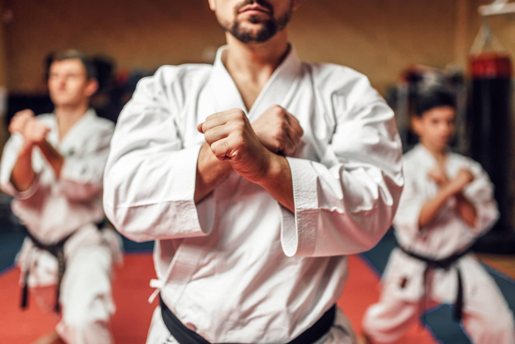 Palmetto Martial Arts Programs image